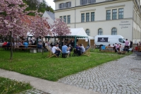 Stadtfest2018